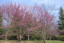 Clemyjontri Park, McLean, United States