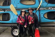 Anacortes Kayak Tours, Anacortes, United States