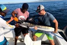 The Blue Marlin Sportfishing, Cabo San Lucas, Mexico