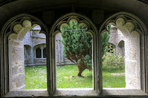 Old Augustinian Friary, Adare, Ireland