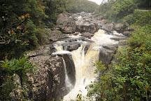 Ranomafana National Park, Fianarantsoa, Madagascar