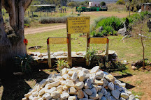 Eseltjiesrus Donkey Sanctuary, McGregor, South Africa