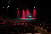 City Theatre, Detroit, United States
