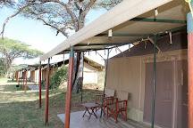 Gosheni Safaris Africa, Arusha, Tanzania