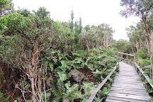 Chiloe National Park, Isla Chiloe, Chile
