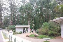 Grants Picnic Ground, Dandenong, Australia