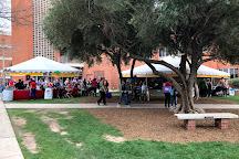 University of Arizona, Tucson, United States