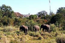 Victoria Falls Snake Park, Victoria Falls, Zimbabwe