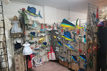 Leafs Treehouse Antiques & Collectables Mall, Coos Bay, United States