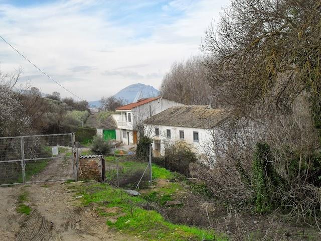 Molino de Tajarilla (ruinas)