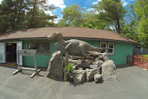 Rock, Fossil, and Dinosaur Shop, South Deerfield, United States