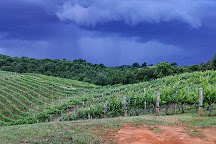 Abingdon Vineyards, Abingdon, United States