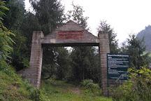 Manali Sanctuary, Manali, India