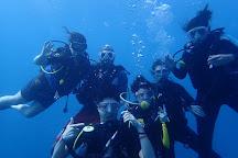Exploration Sous-Marine, Flic En Flac, Mauritius