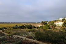 Ballona Wetlands, Los Angeles, United States