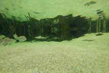Fakieh Aquarium, Jeddah, Saudi Arabia