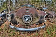 Old Car City, White, United States