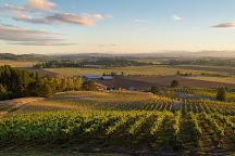 Keeler Estate Vineyard, Amity, United States