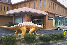 Okuizimo Tane Museum Of Natural History, Izumo, Japan