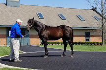 Godolphin at Jonabell Farm, home of the Darley stallions, Lexington, United States