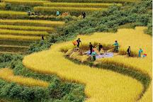 Vietmountain Travel, Hanoi, Vietnam