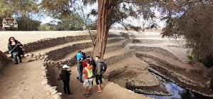 Peru Desert Tours 7