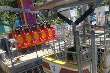 Atlantic Fun Park, Virginia Beach, United States
