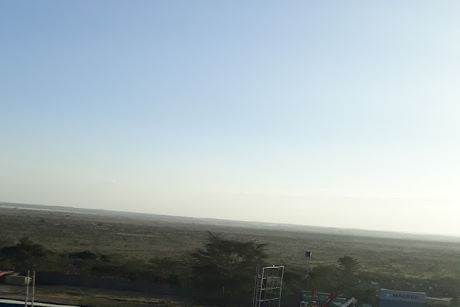 Monkey Adventures, Nairobi, Kenya