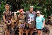 Raro Buggy Tours, Muri, Cook Islands