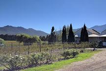 Lemberg Wine Estate, Tulbagh, South Africa