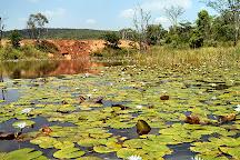 Horseback Africa, Pretoria, South Africa