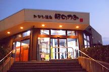 Minato Onsen Honokami, Sakaiminato, Japan