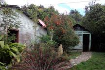 Hacienda Cufa, Puerto Plata, Dominican Republic