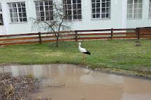 White Stork Museum, Kolked, Hungary
