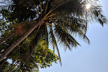Vainguinim Beach, Panjim, India