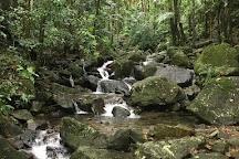 El Yunque, El Yunque National Forest, Puerto Rico