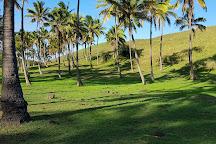 Rapa Nui Parque Nacional, Easter Island, Chile
