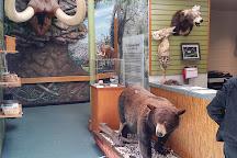 Tree Hill Nature Center, Jacksonville, United States