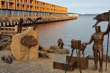 Constitution Dock, Hobart, Australia