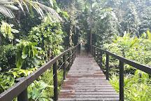 Cahuita National Park, Cahuita, Costa Rica