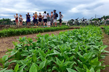 Hoian Cycling, Hoi An, Vietnam
