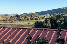 Gloria Ferrer Caves & Vineyards, Sonoma, United States