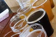 Bald Top Brewing Co., Madison, United States