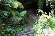 Engelbrecht Cave, Mount Gambier, Australia