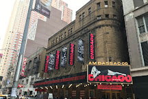 Chicago the Musical, New York City, United States