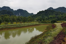 Thung Nham Bird Park, Ninh Hai, Vietnam