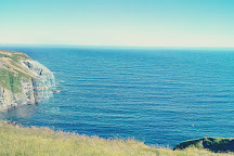 Cape St. Mary's Ecological Reserve, St. Bride's, Canada