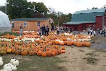 C. N. Smith Farm, East Bridgewater, United States