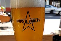 Hops & Barley, Berlin, Germany