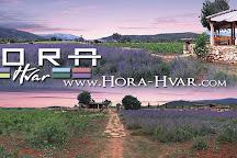 Hora Hvar, Hvar, Croatia